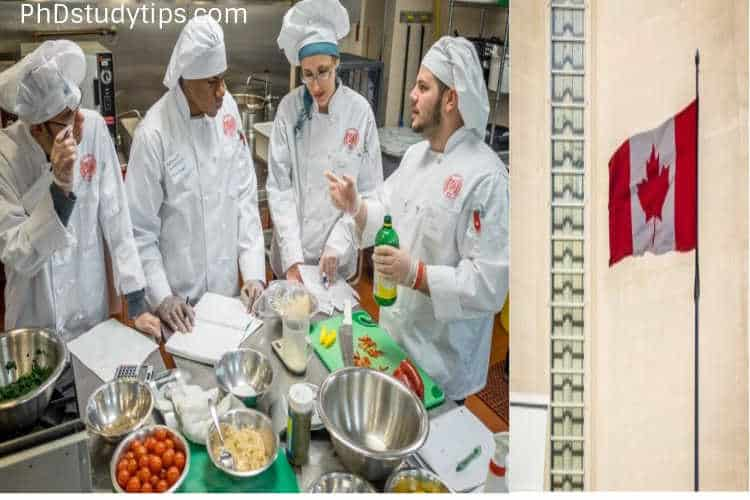 PhD in Food Science Canada